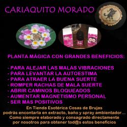 Extracto de Cariaquito Morado